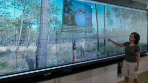 Fire Ecology demo in Hunt Library