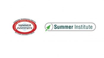 Summer Institute becomes part of DELTA