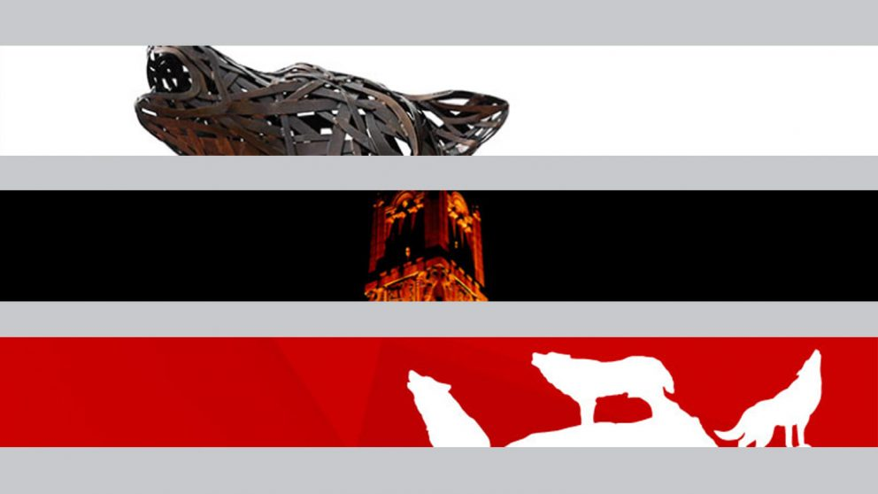 sample moodle banners