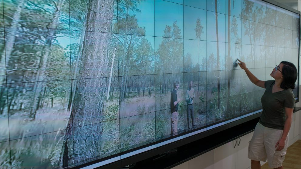 Fire Ecology Virtual Reality show on Visualization Wall in Hunt Library