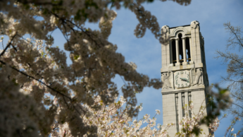 Belltower surrounded by blooms.