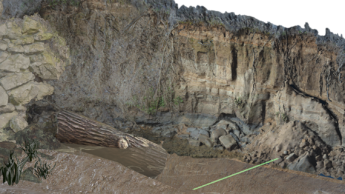 Screenshot of a photoscan from Umstead State Park