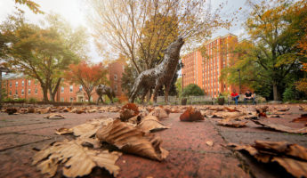 Students enjoy a fall day by the copper wolves in Wolf Plaza on main campus. Photo by Marc Hall