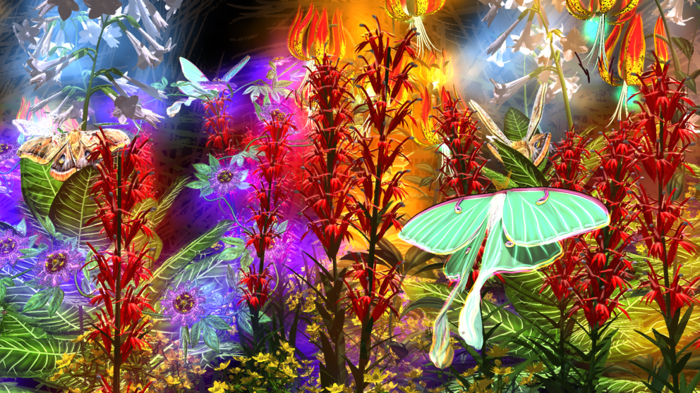 Colorful animated environment of plants, insects and light.