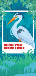 Rich Gurnsey's banner: Bird in a polaroid frame reading wish you were here.