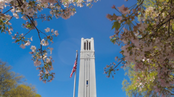 The belltower stands among spring flowers.