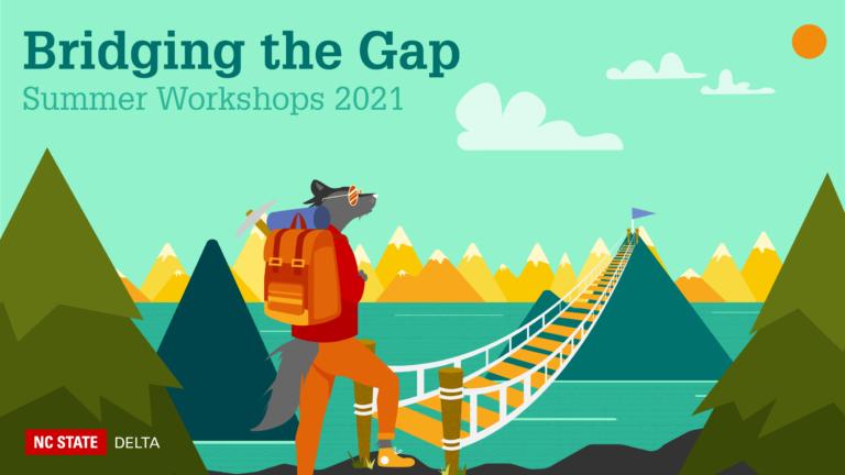 Bridging the Gap. Summer Workshops 2021