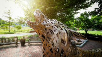 Copper wolf on NC State campus.
