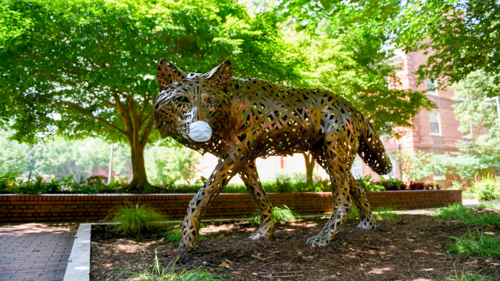 One of the copper wolves at Wolf Plaza wears a protective face mask during the COVID19 (COVID 19) pandemic.